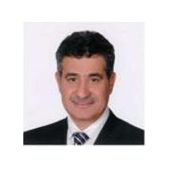 Ibrahim Salem El Seoudi